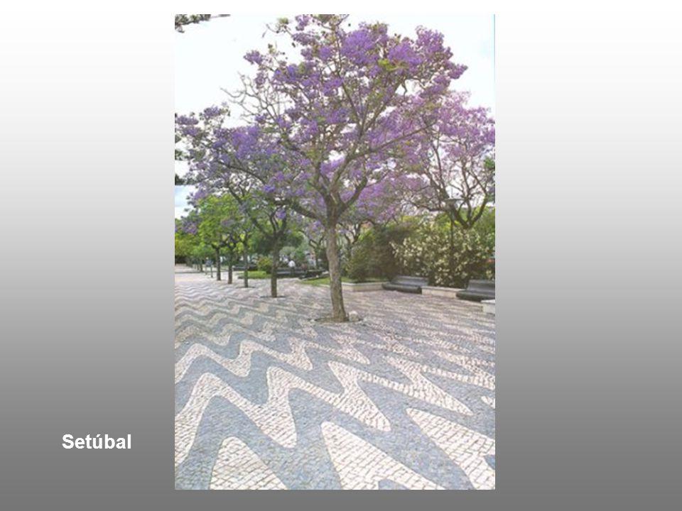 Setúbal – Praça do Bocage