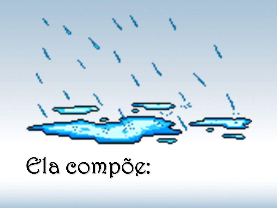 Em outras palavras: Menos de 0.007% de toda a água sobre a terra é potável.