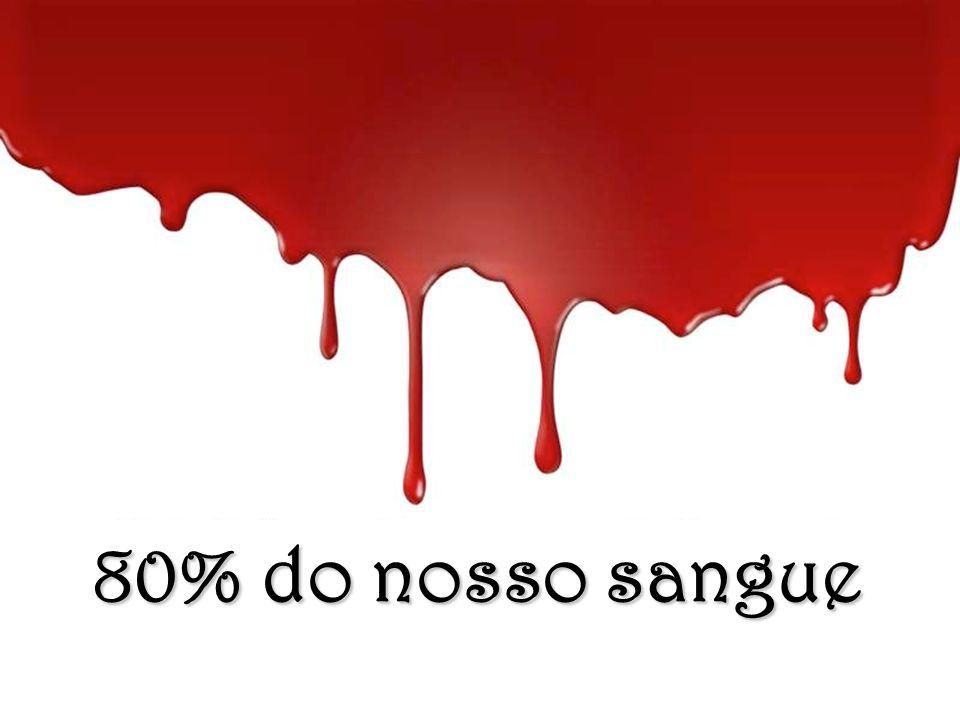 80% do nosso sangue