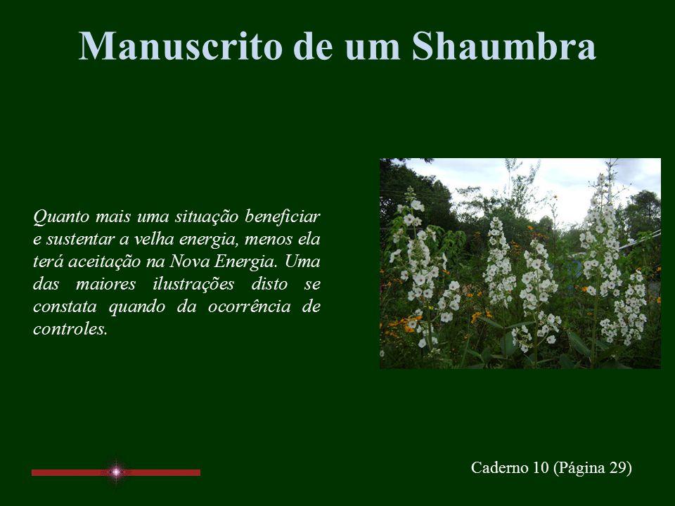 Manuscrito de um Shaumbra Caderno 10 Páginas 29, 30, 31, 32 www.manuscritoshaumbra.com DEZ/09