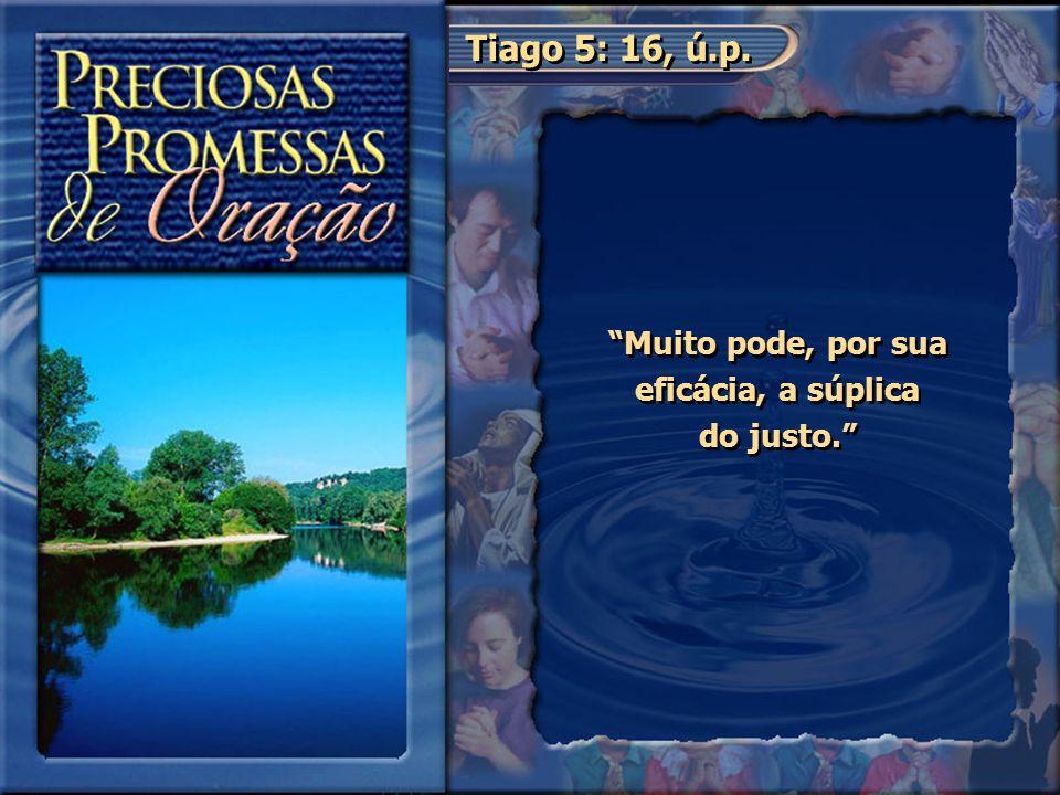 """Tiago 5: 16, ú.p. """"Muito pode, por sua eficácia, a súplica do justo."""""""