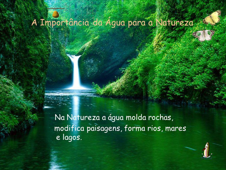 A Importância da Água para a Natureza Na Natureza a água molda rochas, modifica paisagens, forma rios, mares e lagos.