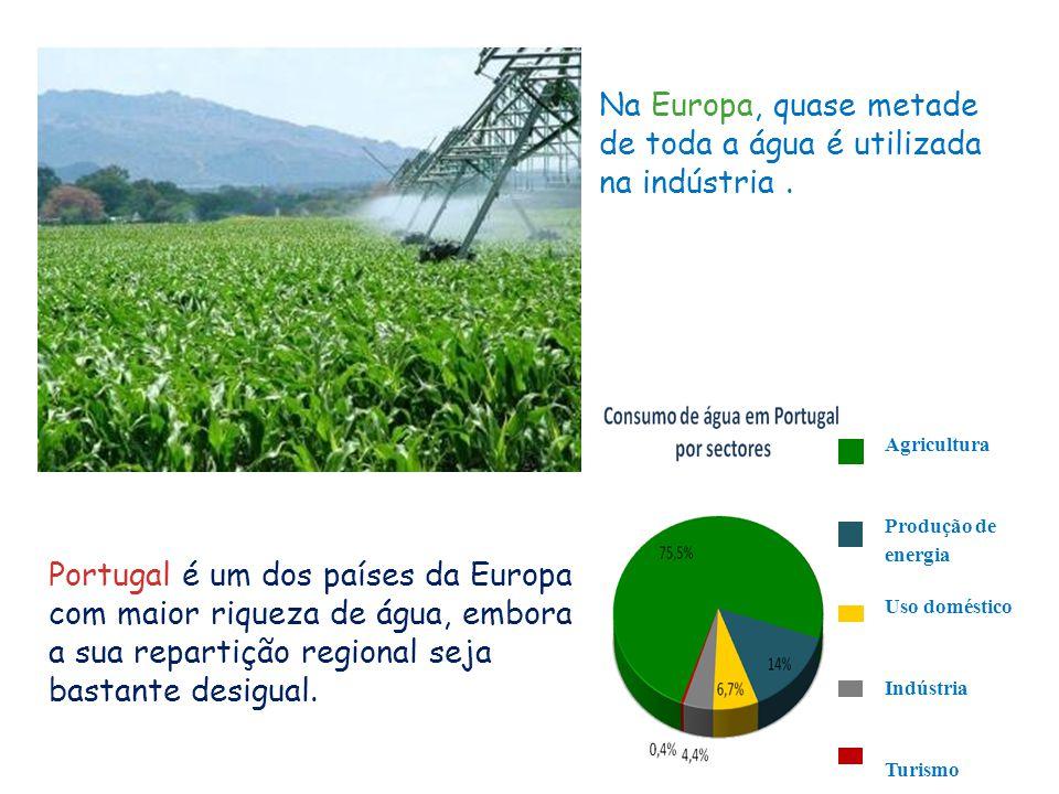 Agricultura Produção de energia Uso doméstico Indústria Turismo Na Europa, quase metade de toda a água é utilizada na indústria. Portugal é um dos paí
