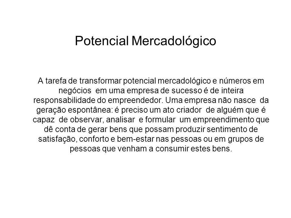 Potencial Mercadológico A tarefa de transformar potencial mercadológico e números em negócios em uma empresa de sucesso é de inteira responsabilidade do empreendedor.