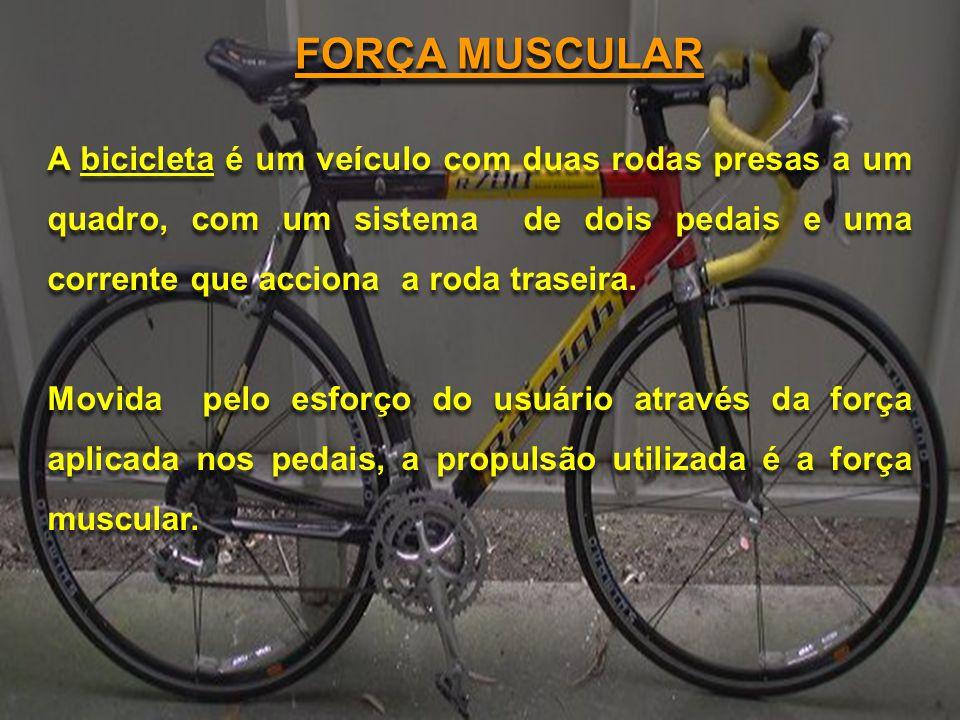 FORÇA MUSCULAR A bicicleta é um veículo com duas rodas presas a um quadro, com um sistema de dois pedais e uma corrente que acciona a roda traseira.