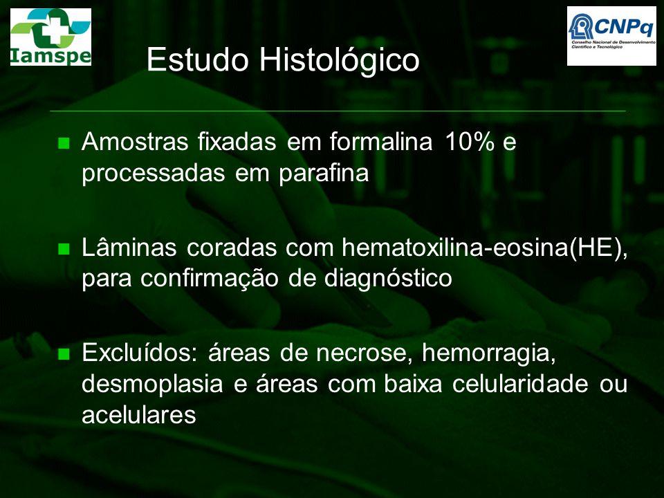 Estudo Histológico Amostras fixadas em formalina 10% e processadas em parafina Lâminas coradas com hematoxilina-eosina(HE), para confirmação de diagnó
