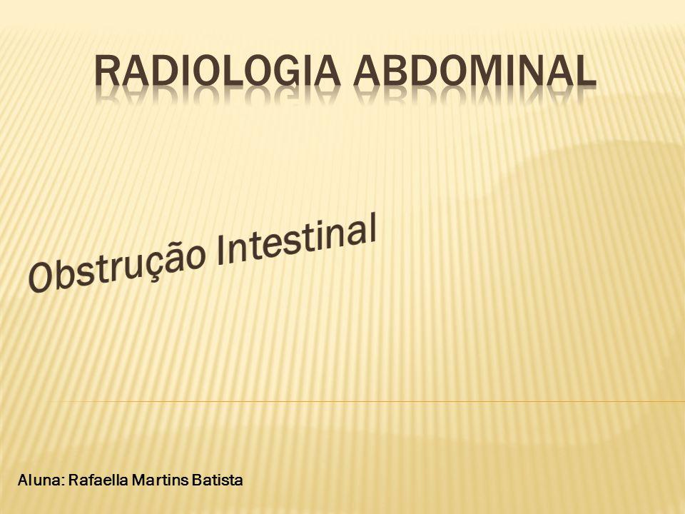 Aluna: Rafaella Martins Batista
