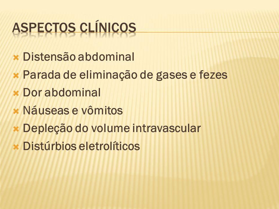 Distensão abdominal  Parada de eliminação de gases e fezes  Dor abdominal  Náuseas e vômitos  Depleção do volume intravascular  Distúrbios eletrolíticos
