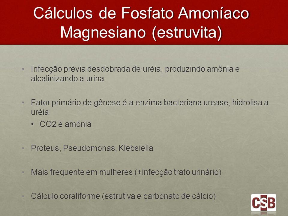 Cálculos de Fosfato Amoníaco Magnesiano (estruvita) Infecção prévia desdobrada de uréia, produzindo amônia e alcalinizando a urina Infecção prévia des