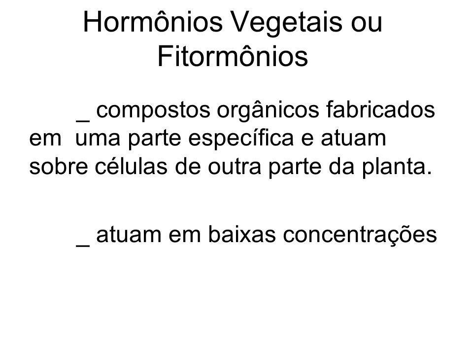 Hormônios Vegetais ou Fitormônios _ compostos orgânicos fabricados em uma parte específica e atuam sobre células de outra parte da planta. _ atuam em
