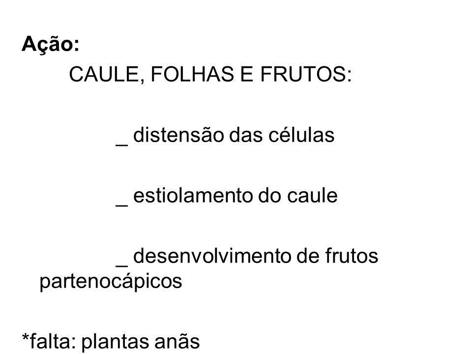 Ação: CAULE, FOLHAS E FRUTOS: _ distensão das células _ estiolamento do caule _ desenvolvimento de frutos partenocápicos *falta: plantas anãs