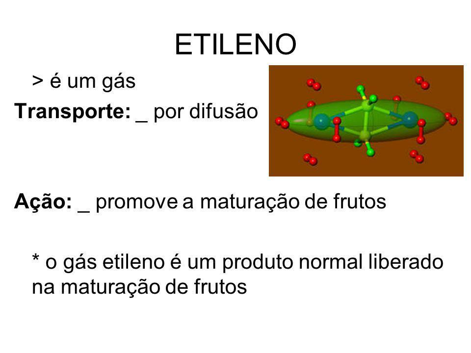 ETILENO > é um gás Transporte: _ por difusão Ação: _ promove a maturação de frutos * o gás etileno é um produto normal liberado na maturação de frutos