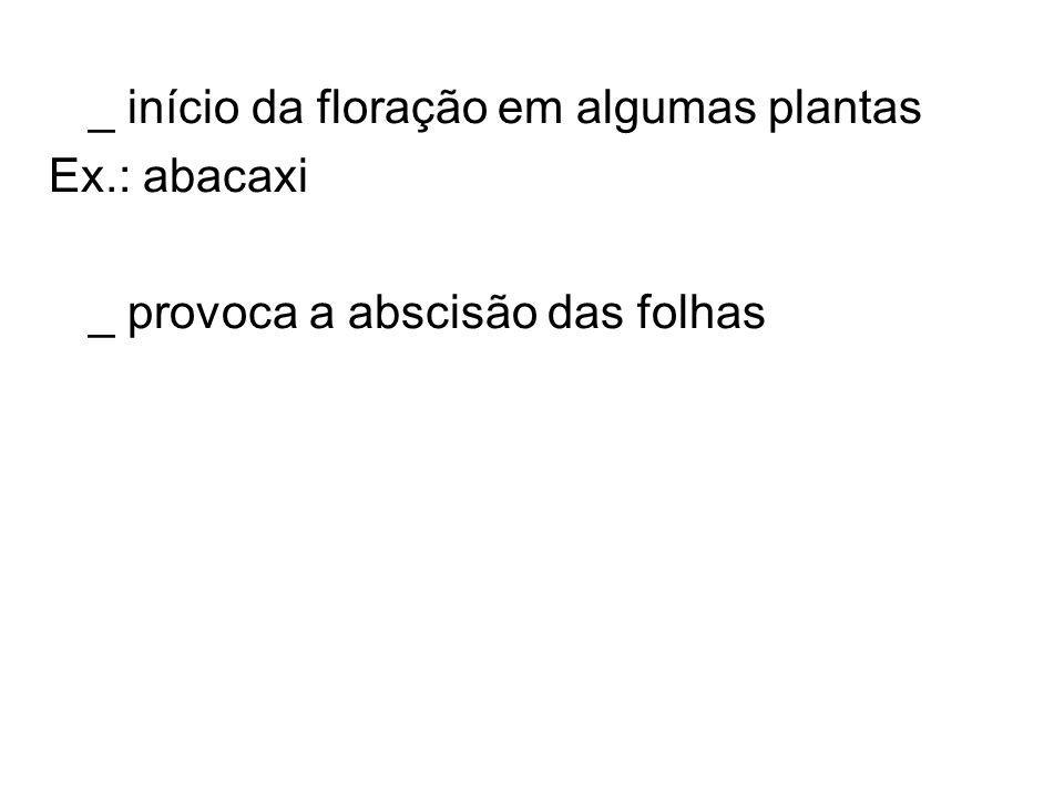 _ início da floração em algumas plantas Ex.: abacaxi _ provoca a abscisão das folhas