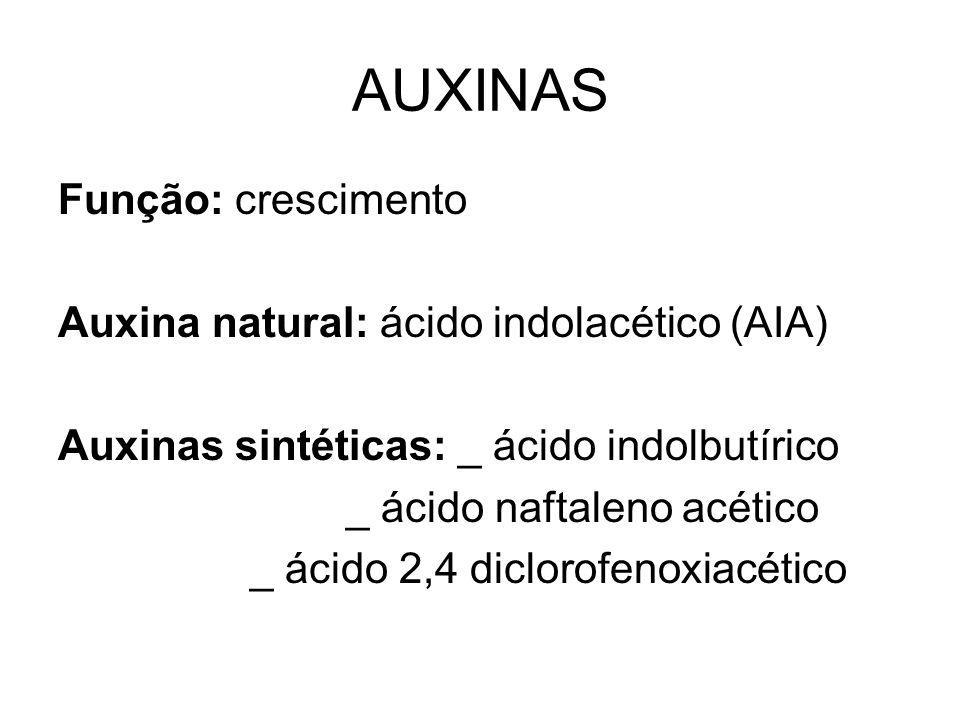 AUXINAS Função: crescimento Auxina natural: ácido indolacético (AIA) Auxinas sintéticas: _ ácido indolbutírico _ ácido naftaleno acético _ ácido 2,4 d