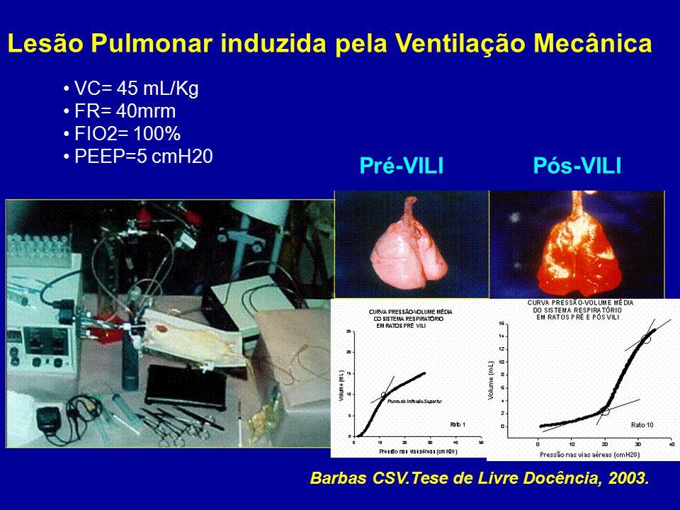 Lesão Pulmonar induzida pela Ventilação Mecânica VC= 45 mL/Kg FR= 40mrm FIO2= 100% PEEP=5 cmH20 Pré-VILI Pós-VILI Barbas CSV.Tese de Livre Docência, 2