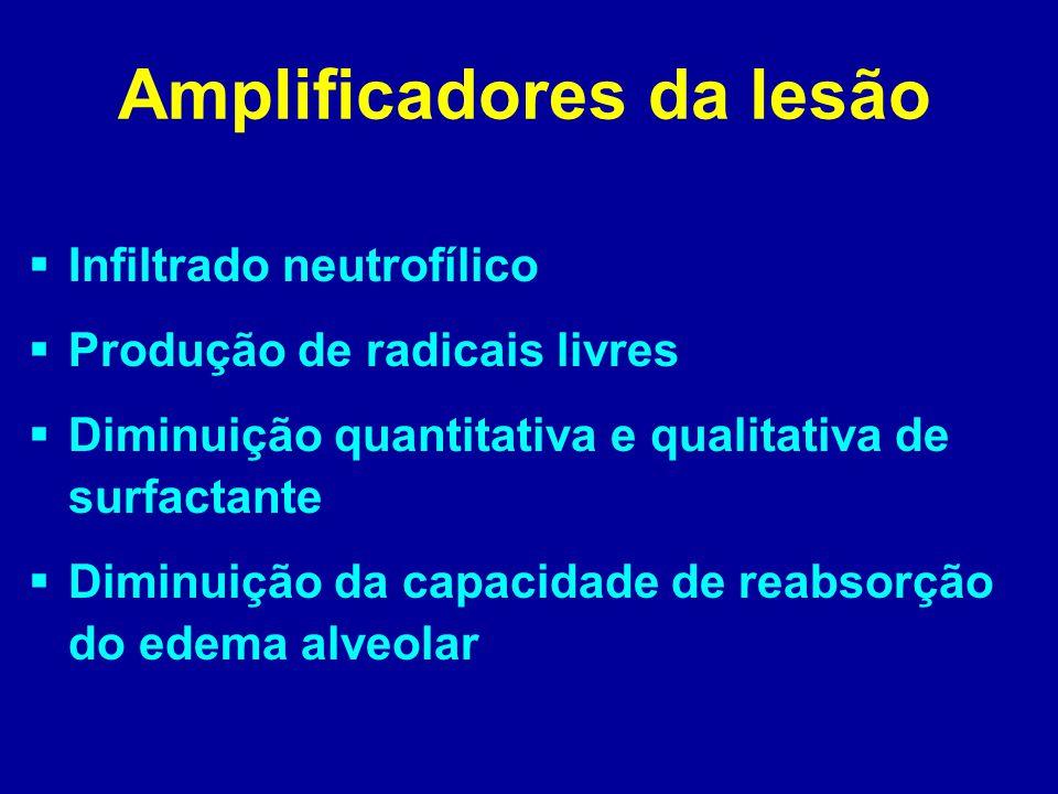 Amplificadores da lesão  Infiltrado neutrofílico  Produção de radicais livres  Diminuição quantitativa e qualitativa de surfactante  Diminuição da