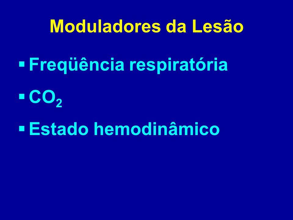 Moduladores da Lesão  Freqüência respiratória  CO 2  Estado hemodinâmico