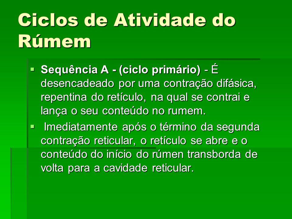 Ciclos de Atividade do Rúmem  Sequência A - (ciclo primário) - É desencadeado por uma contração difásica, repentina do retículo, na qual se contrai e