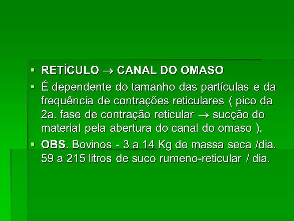  RETÍCULO  CANAL DO OMASO  É dependente do tamanho das partículas e da frequência de contrações reticulares ( pico da 2a. fase de contração reticul