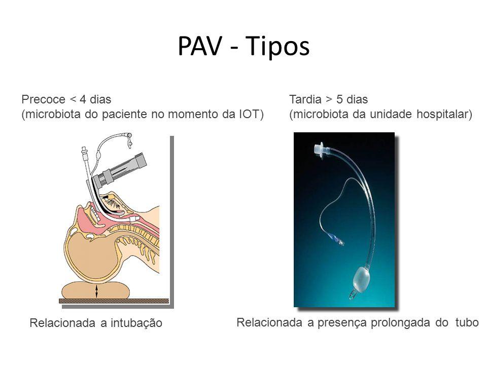 Precoce < 4 dias (microbiota do paciente no momento da IOT) Tardia > 5 dias (microbiota da unidade hospitalar) PAV - Tipos Relacionada a intubação Relacionada a presença prolongada do tubo