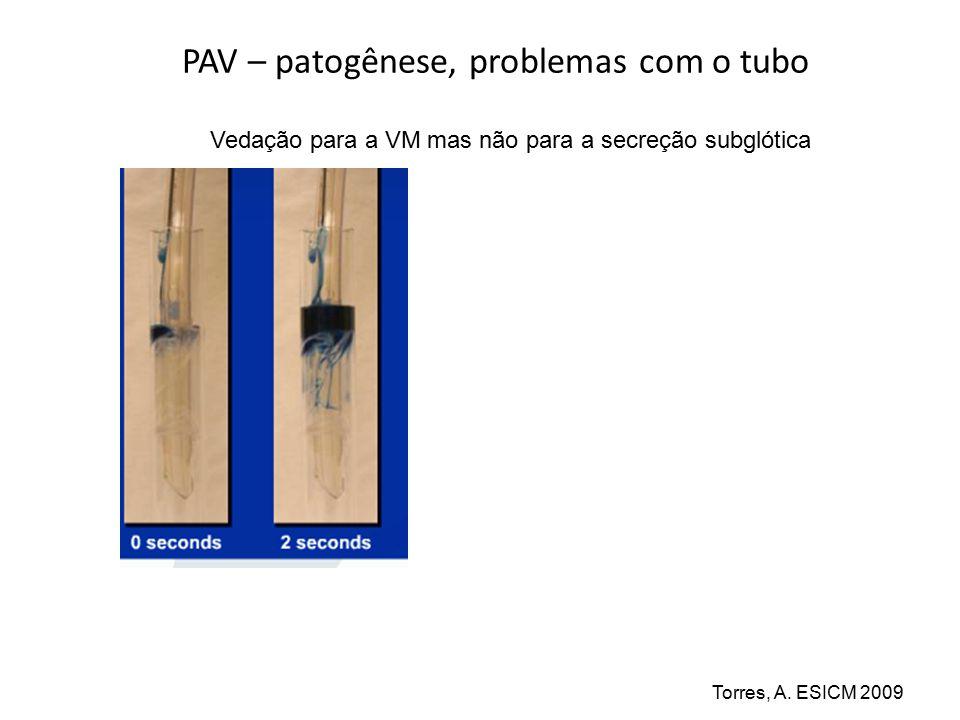 PAV – patogênese, o biofilme no tubo Alcón A., Fabregas N, Torres A.