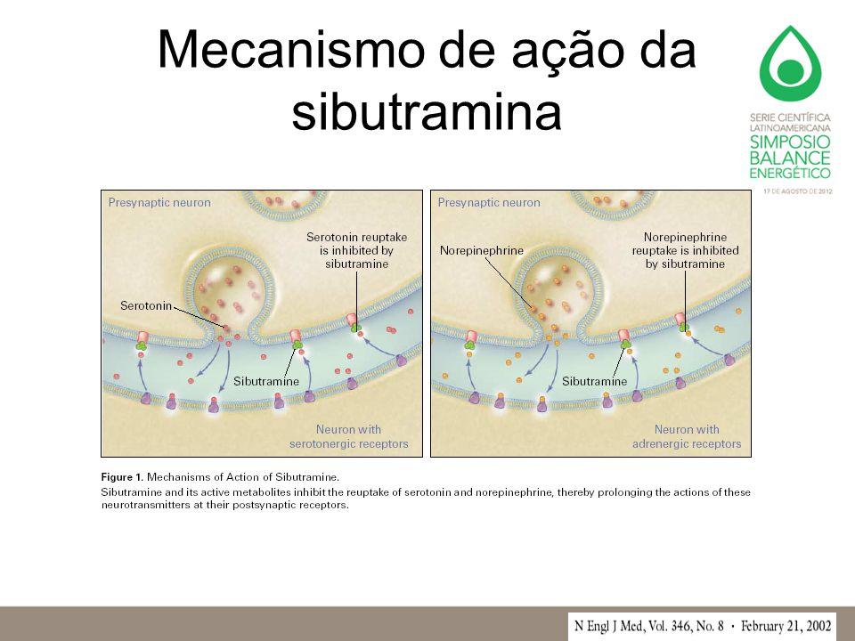Mecanismo de ação da sibutramina