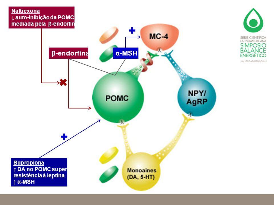 α-MSHβ-endorfina Bupropiona ↑ DA no POMC supera resistência à leptina ↑ α-MSH Naltrexona ↓ auto-inibição da POMC mediada pela β-endorfina