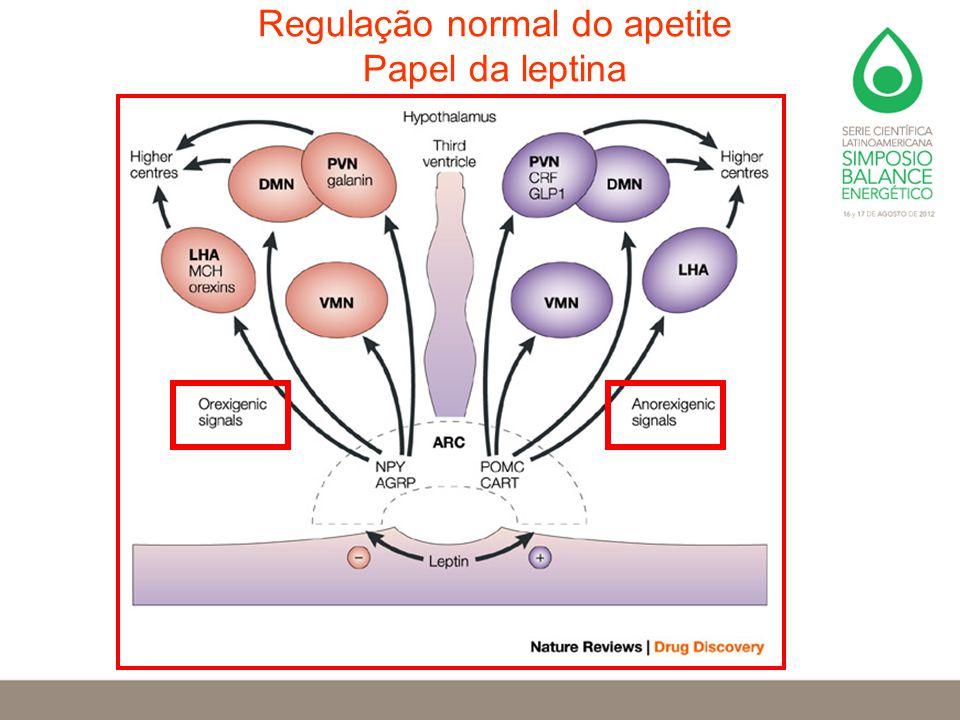 Regulação normal do apetite Papel da leptina