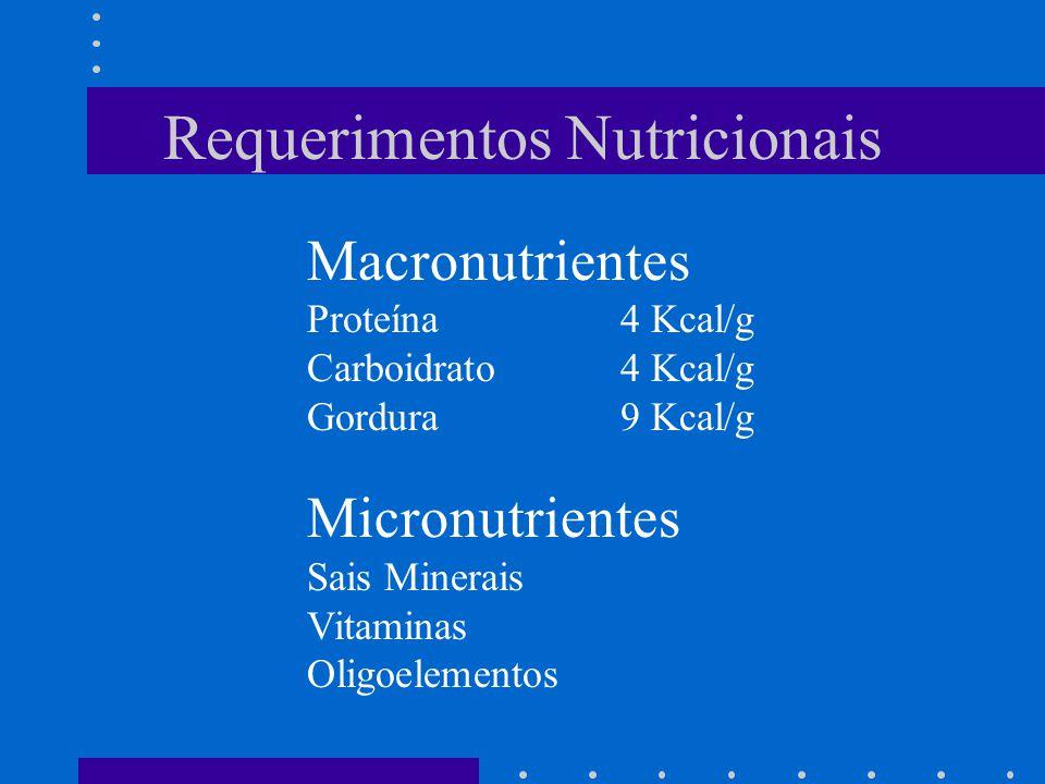 Requerimentos Nutricionais Macronutrientes Proteína4 Kcal/g Carboidrato4 Kcal/g Gordura 9 Kcal/g Micronutrientes Sais Minerais Vitaminas Oligoelemento