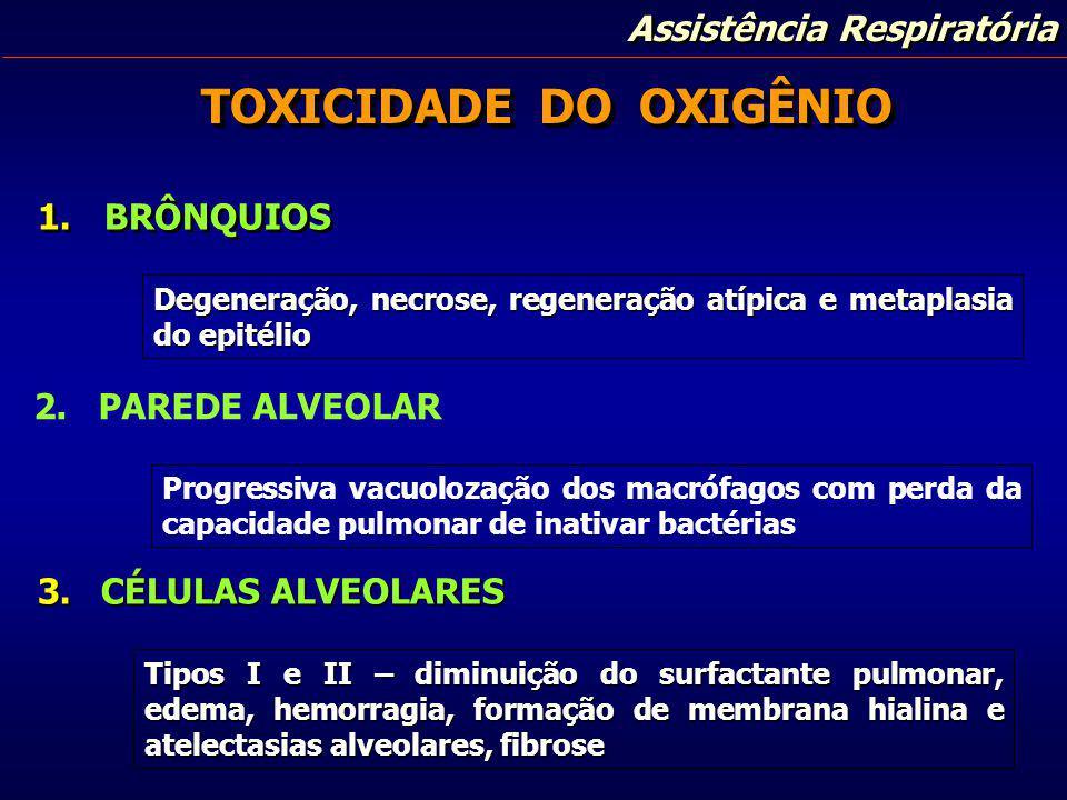Assistência Respiratória 1.BRÔNQUIOS 2. PAREDE ALVEOLAR TOXICIDADE DO OXIGÊNIO Degeneração, necrose, regeneração atípica e metaplasia do epitélio Prog