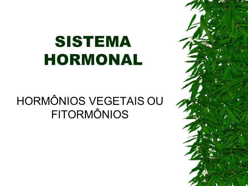 SISTEMA HORMONAL HORMÔNIOS VEGETAIS OU FITORMÔNIOS