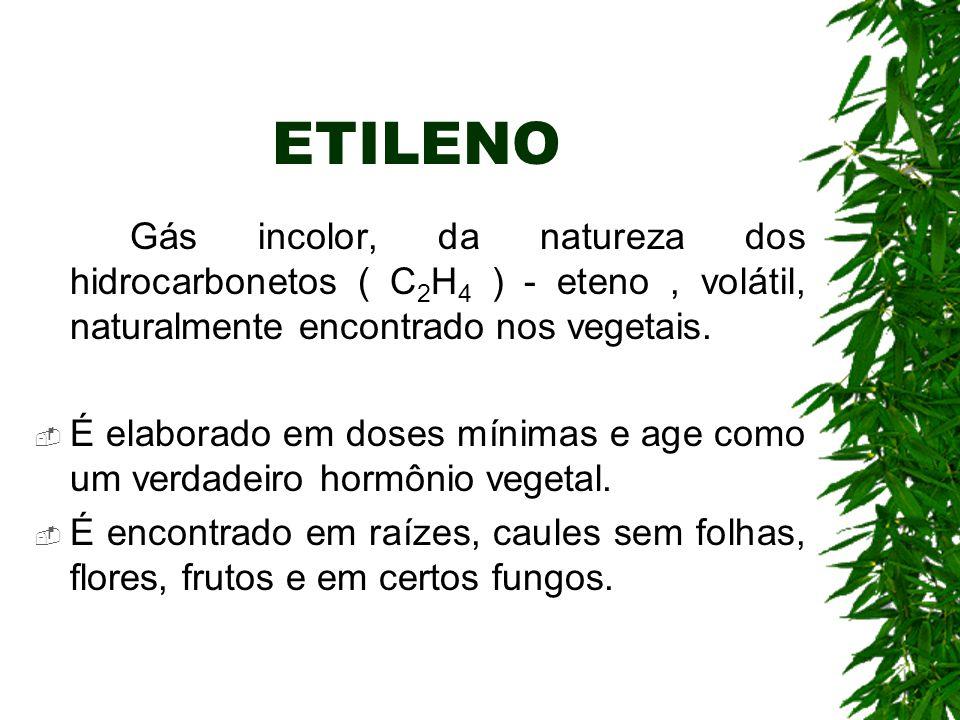 ETILENO Gás incolor, da natureza dos hidrocarbonetos ( C 2 H 4 ) - eteno, volátil, naturalmente encontrado nos vegetais.  É elaborado em doses mínima