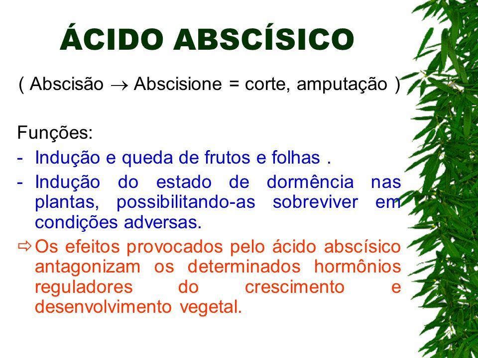 ÁCIDO ABSCÍSICO ( Abscisão  Abscisione = corte, amputação ) Funções: -Indução e queda de frutos e folhas. -Indução do estado de dormência nas plantas
