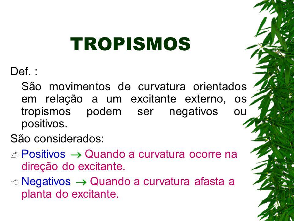 TROPISMOS Def. : São movimentos de curvatura orientados em relação a um excitante externo, os tropismos podem ser negativos ou positivos. São consider