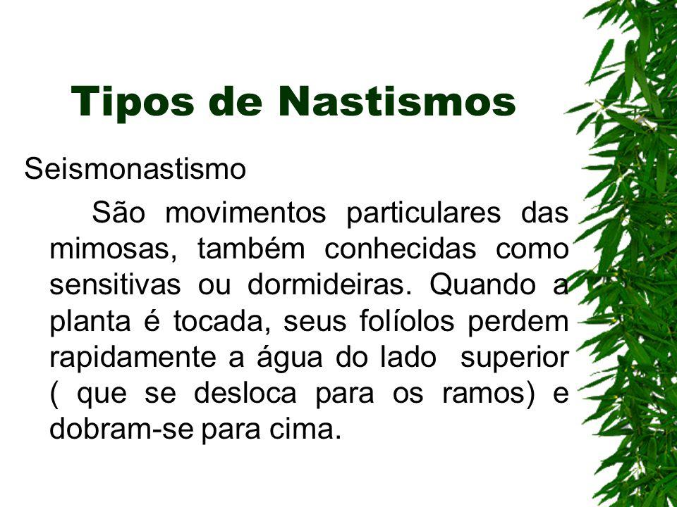Tipos de Nastismos Seismonastismo São movimentos particulares das mimosas, também conhecidas como sensitivas ou dormideiras.