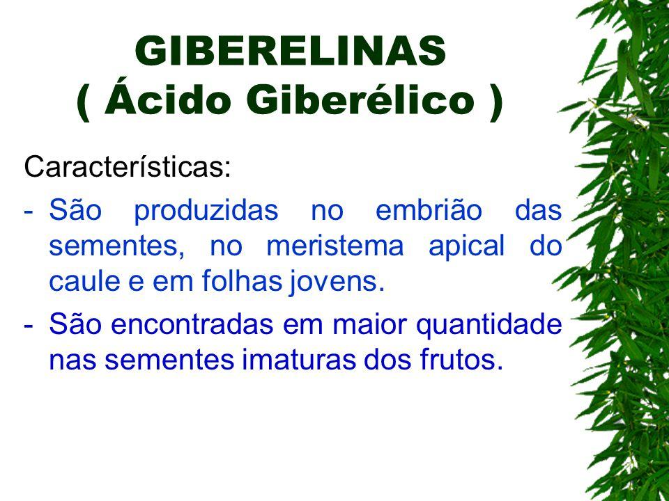 GIBERELINAS ( Ácido Giberélico ) Características: -São produzidas no embrião das sementes, no meristema apical do caule e em folhas jovens. -São encon
