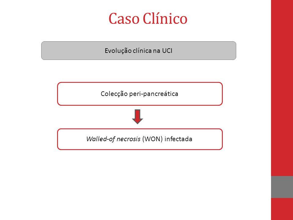 Caso Clínico Evolução clínica na UCI Colecção peri-pancreática Walled-of necrosis (WON) infectada