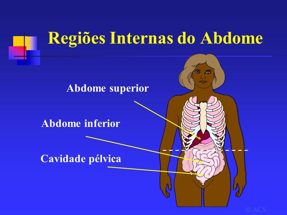 Regiões Internas do Abdome  ACS Abdome superior Abdome inferior Cavidade pélvica