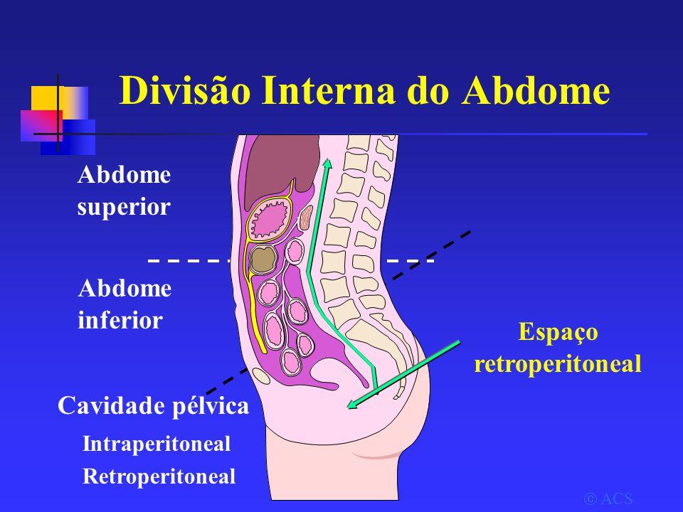 Divisão Interna do Abdome Abdome superior Abdome inferior Cavidade pélvica Intraperitoneal Retroperitoneal  ACS Espaço retroperitoneal