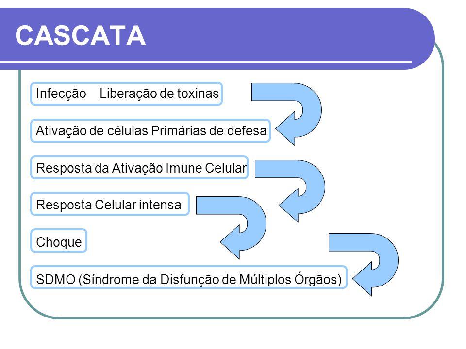 CASCATA Infecção Liberação de toxinas Ativação de células Primárias de defesa Resposta da Ativação Imune Celular Resposta Celular intensa Choque SDMO