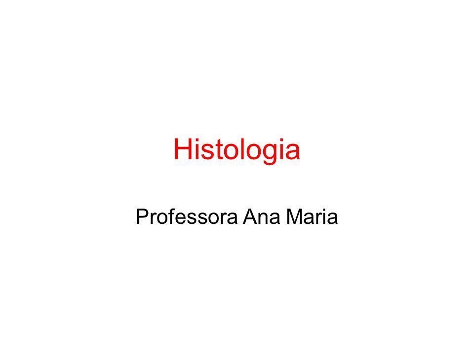 Histologia Professora Ana Maria