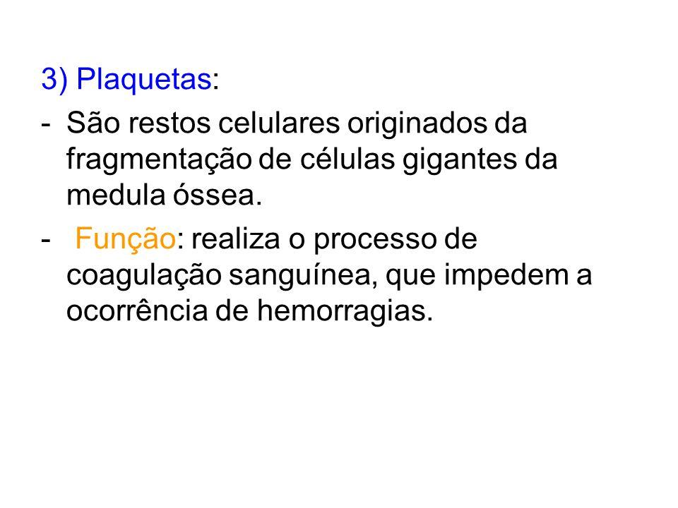 3) Plaquetas: -São restos celulares originados da fragmentação de células gigantes da medula óssea. - Função: realiza o processo de coagulação sanguín