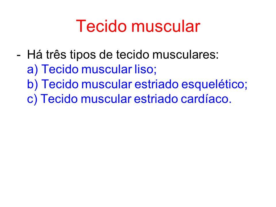 Tecido muscular -Há três tipos de tecido musculares: a) Tecido muscular liso; b) Tecido muscular estriado esquelético; c) Tecido muscular estriado cardíaco.