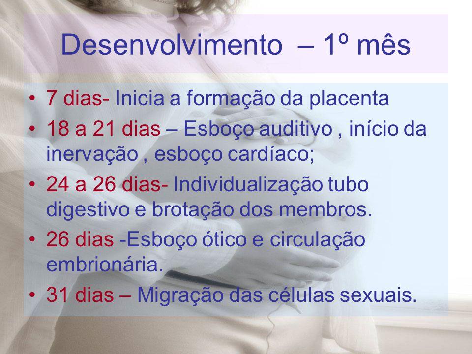 Desenvolvimento – 1º mês 7 dias- Inicia a formação da placenta 18 a 21 dias – Esboço auditivo, início da inervação, esboço cardíaco; 24 a 26 dias- Ind