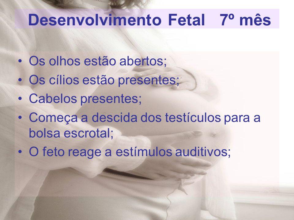 Os olhos estão abertos; Os cílios estão presentes; Cabelos presentes; Começa a descida dos testículos para a bolsa escrotal; O feto reage a estímulos