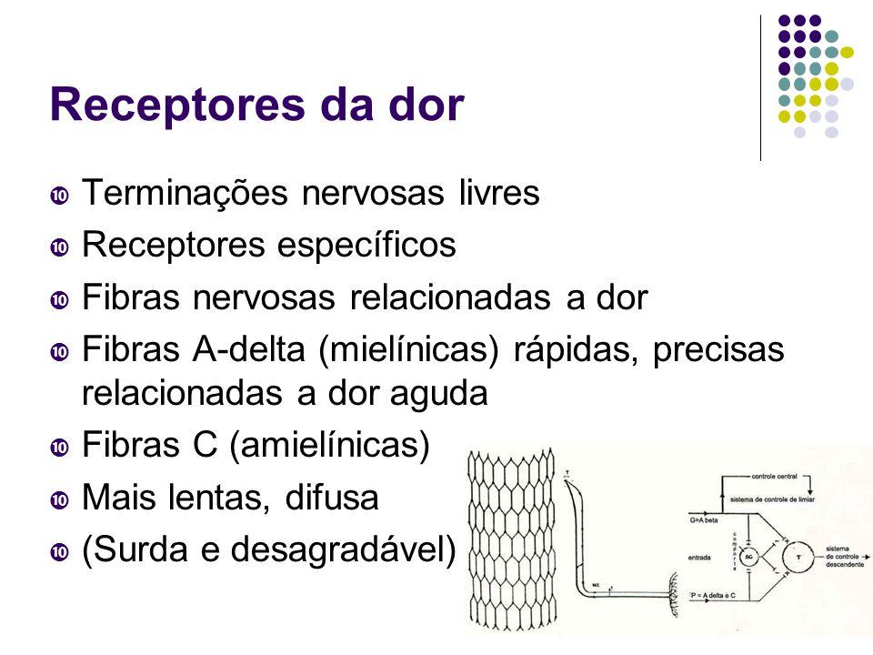 Receptores da dor  Terminações nervosas livres  Receptores específicos  Fibras nervosas relacionadas a dor  Fibras A-delta (mielínicas) rápidas, precisas relacionadas a dor aguda  Fibras C (amielínicas)  Mais lentas, difusa  (Surda e desagradável)