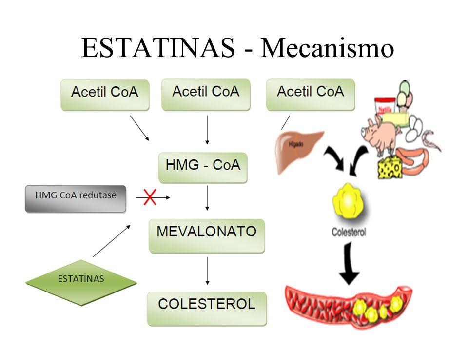 ESTATINAS - Mecanismo
