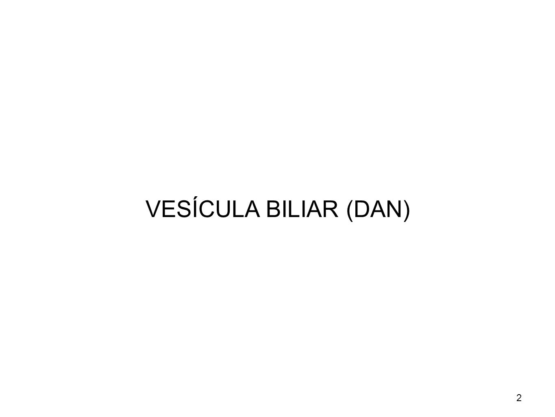2 VESÍCULA BILIAR (DAN)
