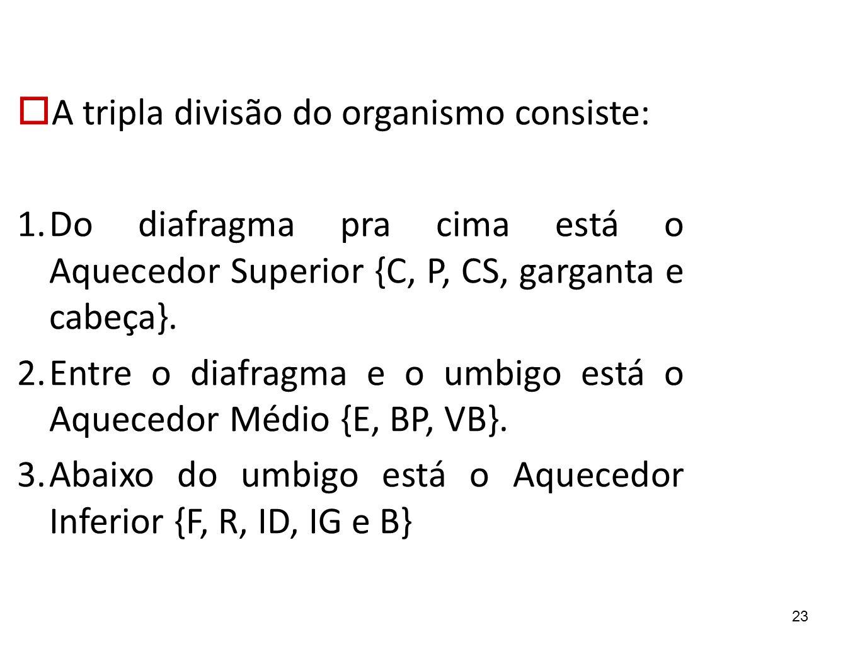 23  A tripla divisão do organismo consiste: 1. Do diafragma pra cima está o Aquecedor Superior {C, P, CS, garganta e cabeça}. 2. Entre o diafragma e
