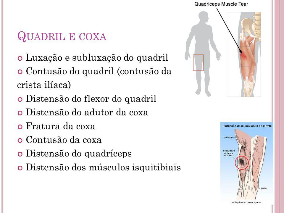 Q UADRIL E COXA Luxação e subluxação do quadril Contusão do quadril (contusão da crista ilíaca) Distensão do flexor do quadril Distensão do adutor da coxa Fratura da coxa Contusão da coxa Distensão do quadríceps Distensão dos músculos isquitibiais